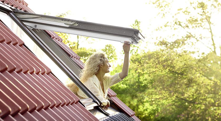 פתרונות לחלונות גג